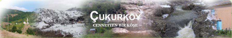 Ordu İli Akkuş İlçesi Çukurköy